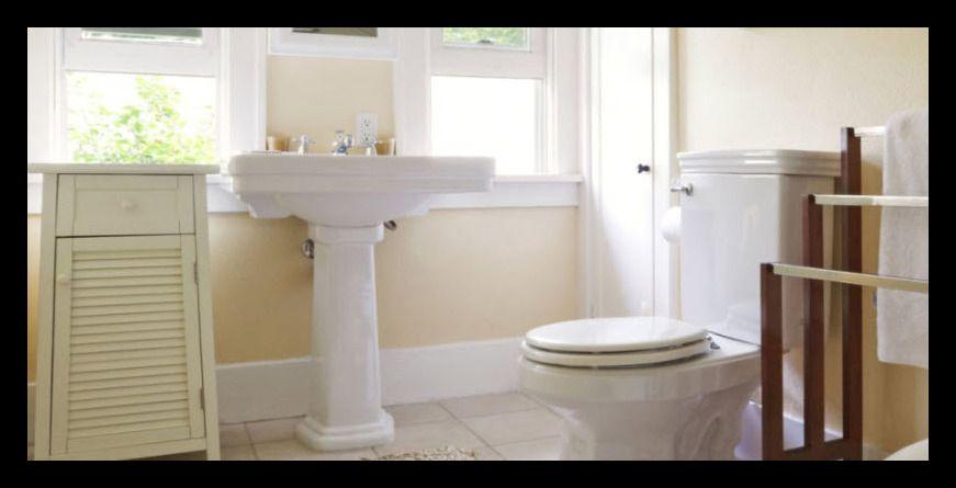limpiadores caseros para inodoros